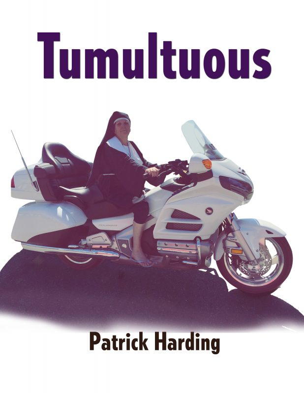 Tumultuous Part One: A Teen's Further Adventures in Nazi America